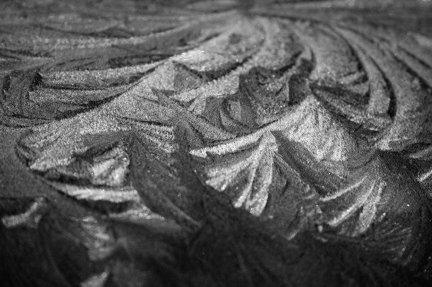 Frost, September 19, 2013