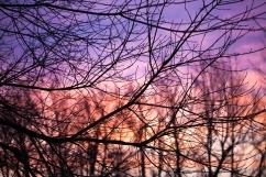 Sunset, November 30, 2013