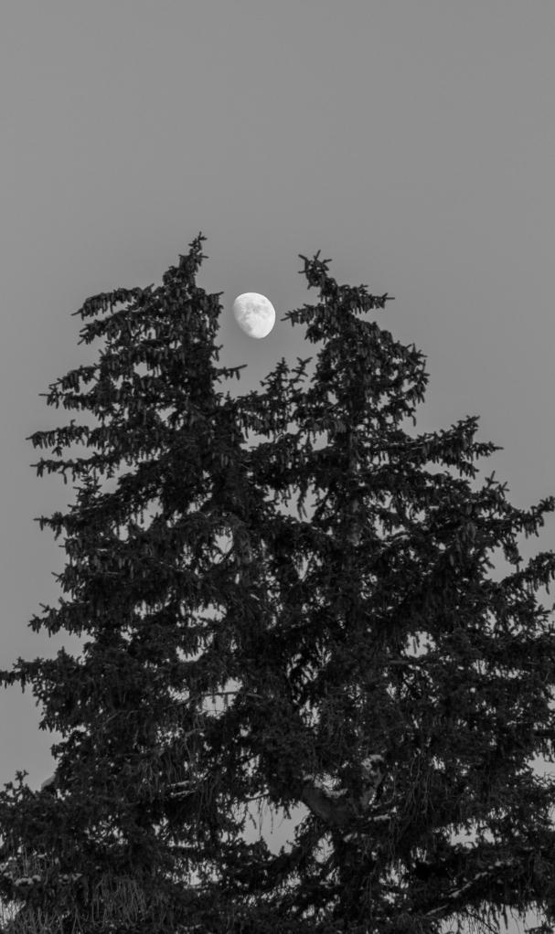 Eye of Sauron, Friday, October 13, 2013