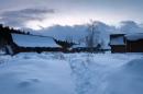 Snowscape, January 10, 2013