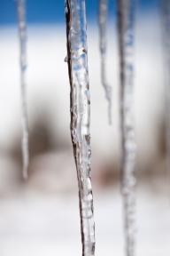 Frozen, February 1, 2014